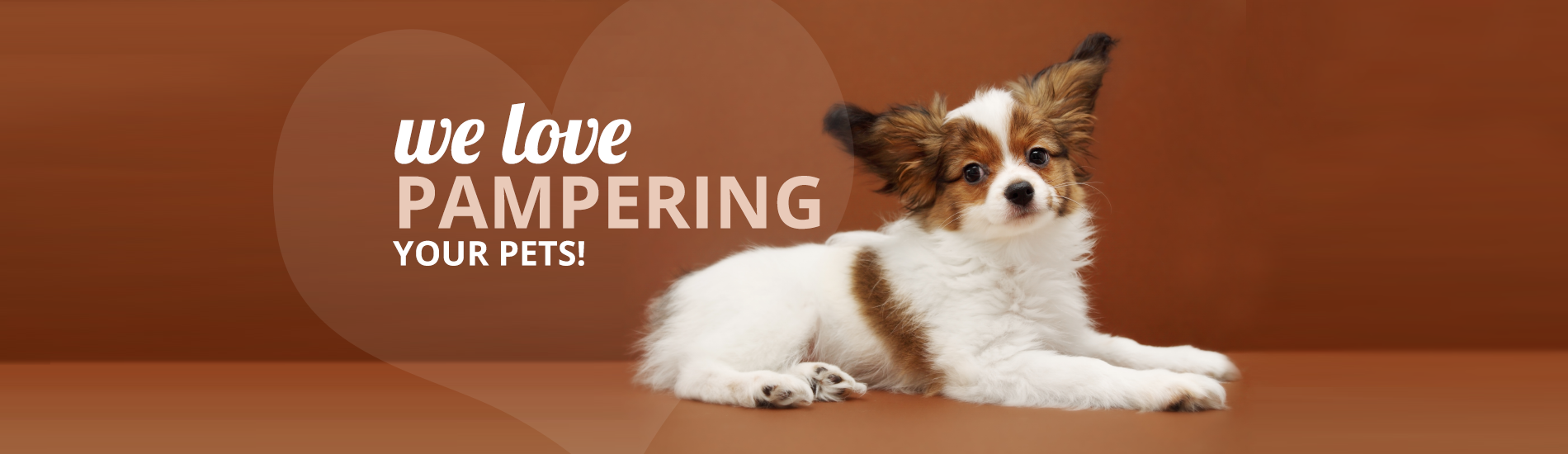 Calling All Paws | We Love Pampering Your Pets