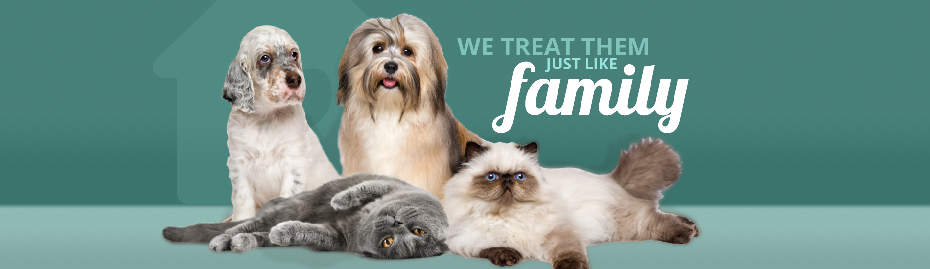 Calling All Paws | We Treat Them Just Like Family