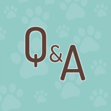 Our Resources | Calling All Paws