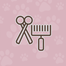 Professional Pet Grooming Services | Calling All Paws